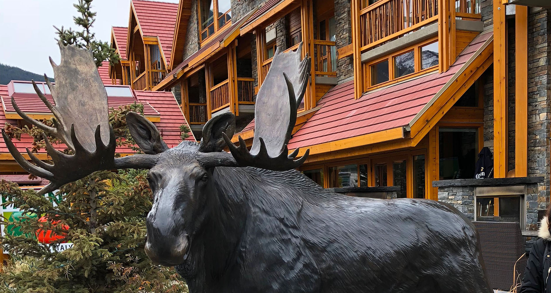 Moose Hotel and Suites, Banff